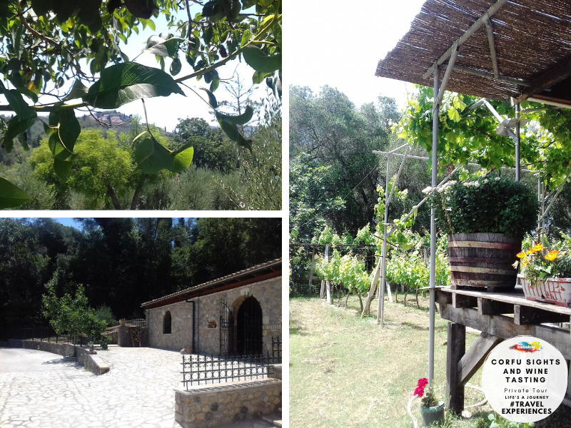 Travelco Corfu sights & wine tasting